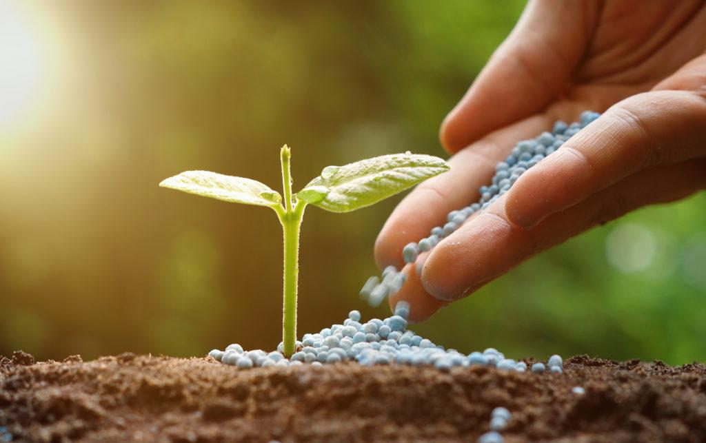 What are Fertilizers Kian Petroleum
